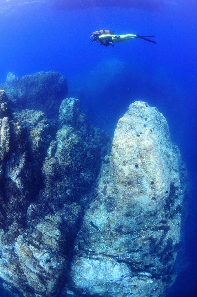 inmersiones costa brava buceadora sobre montaña submarina