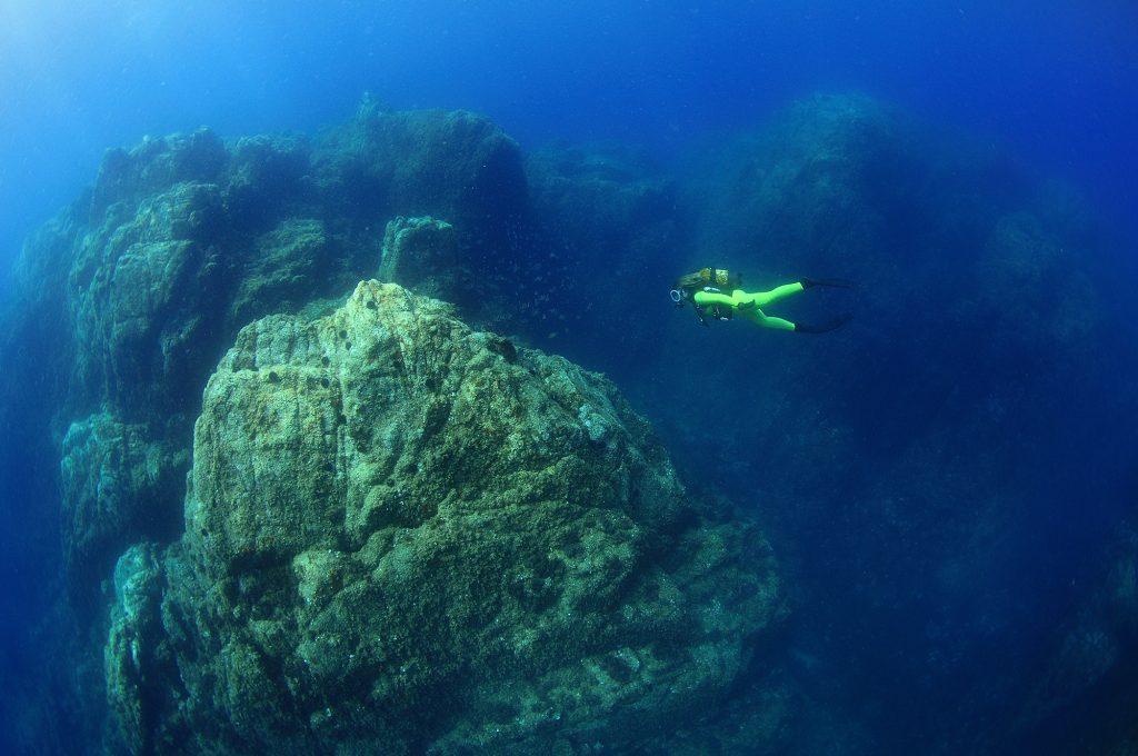 mejores inmersiones la llosa de platja d'aro